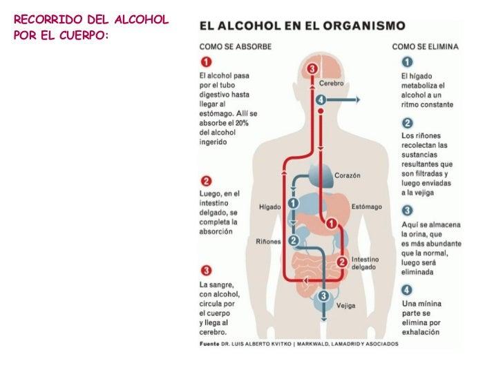 Los preparados al alcoholismo o bady