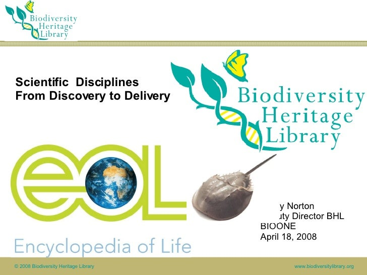 Scientific  Disciplines From Discovery to Delivery Cathy Norton Deputy Director BHL BIOONE April 18, 2008