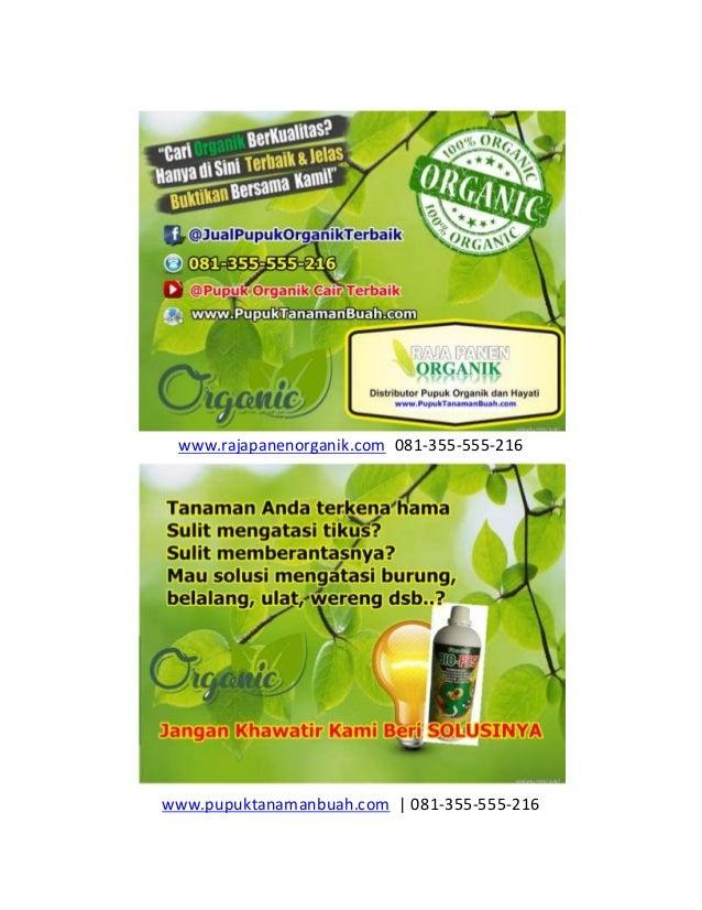 www.rajapanenorganik.com 081-355-555-216 www.pupuktanamanbuah.com | 081-355-555-216