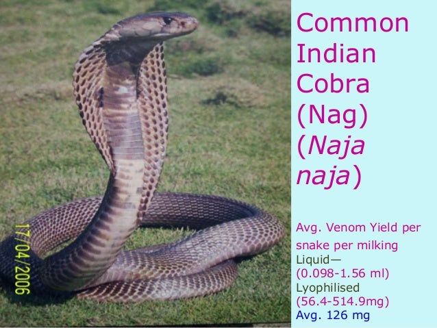 Biopharmaceuticals (An Antivenom perspective)Naja Kaouthia Venom