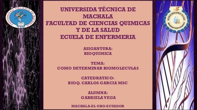UNIVERSIDA TÉCNICA DE MACHALA FACULTAD DE CIENCIAS QUIMICAS Y DE LA SALUD ECUELA DE ENFERMERIA ASIGANTURA: BIOQUIMICA TEMA...