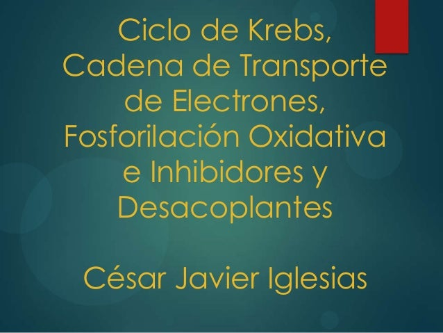 Ciclo de Krebs, Cadena de Transporte de Electrones, Fosforilación Oxidativa e Inhibidores y Desacoplantes César Javier Igl...