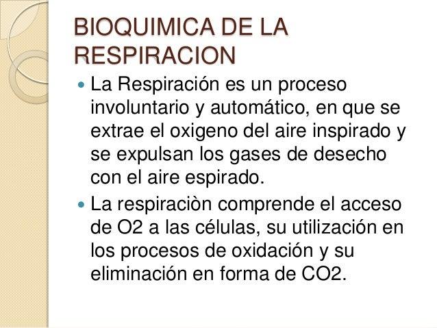 Bioquimica de la respiracion.. Slide 2