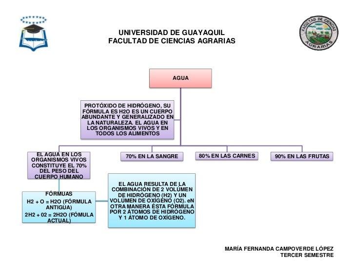 Bioquimica Mapas Conceptuales