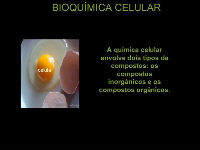 BIOQUÍMICA CELULAR A química celular envolve dois tipos de compostos: os compostos inorgânicos e os compostos orgânicos. c...