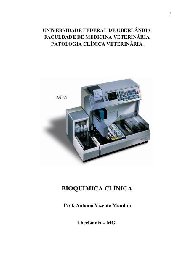 1 UNIVERSIDADE FEDERAL DE UBERLÂNDIA FACULDADE DE MEDICINA VETERINÁRIA PATOLOGIA CLÍNICA VETERINÁRIA BIOQUÍMICA CLÍNICA Pr...