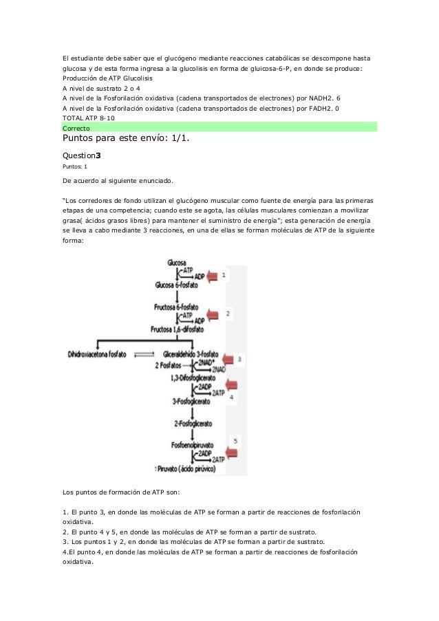 Bioquimica correciones