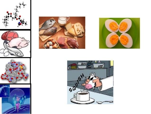 Estrutura e Funções de Proteínas Bioquímica Educação Física Profa. Viviane