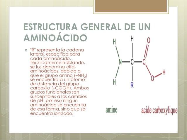 Aminoácidos Por Mauro Monta