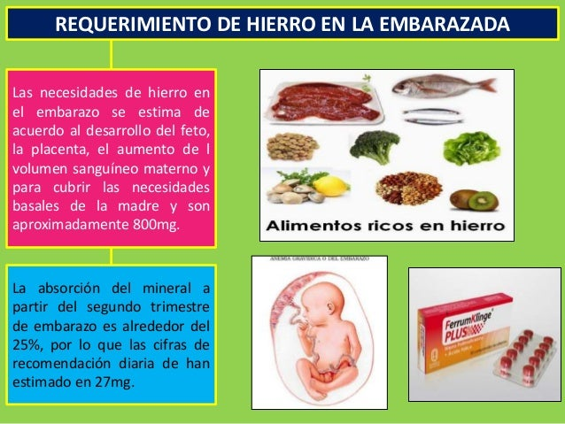 Metabolismo y requerimiento nutricional en la embarazada - Alimentos que contengan hierro para embarazadas ...