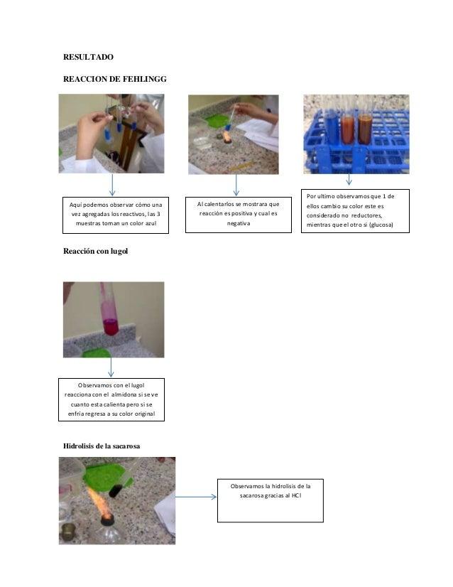 RESULTADO REACCION DE FEHLINGG  Aquí podemos observar cómo una vez agregadas los reactivos, las 3 muestras toman un color ...