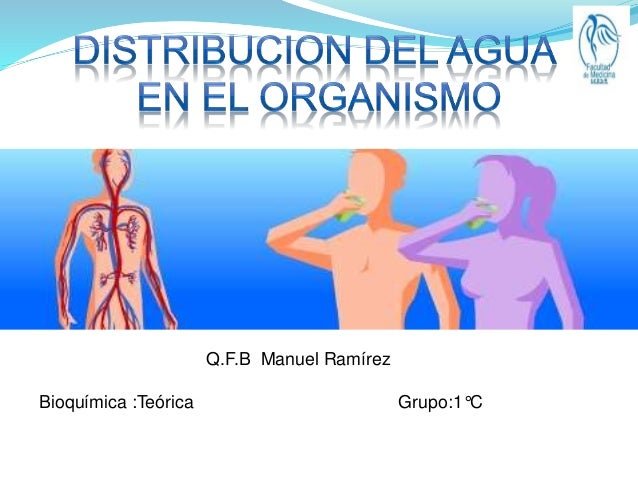 Q.F.B Manuel Ramírez  Bioquímica :Teórica Grupo:1°C