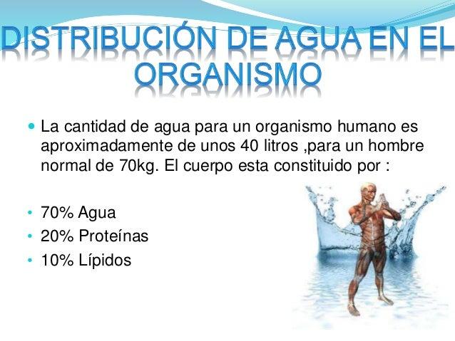  La cantidad de agua para un organismo humano es  aproximadamente de unos 40 litros ,para un hombre  normal de 70kg. El c...