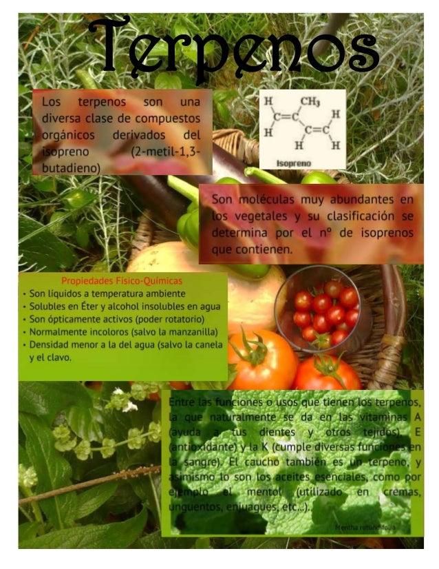 esteroides para mejorar el cuerpo