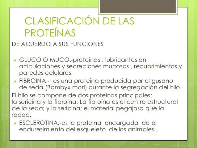 CLASIFICACIÓN DE LAS    PROTEÍNASDE ACUERDO A SUS FUNCIONES  GLUCO O MUCO.-proteinas : lubricantes en   articulaciones y ...