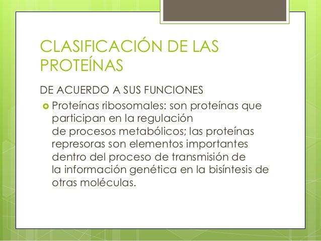 CLASIFICACIÓN DE LASPROTEÍNASDE ACUERDO A SUS FUNCIONES Proteínas ribosomales: son proteínas que  participan en la regula...