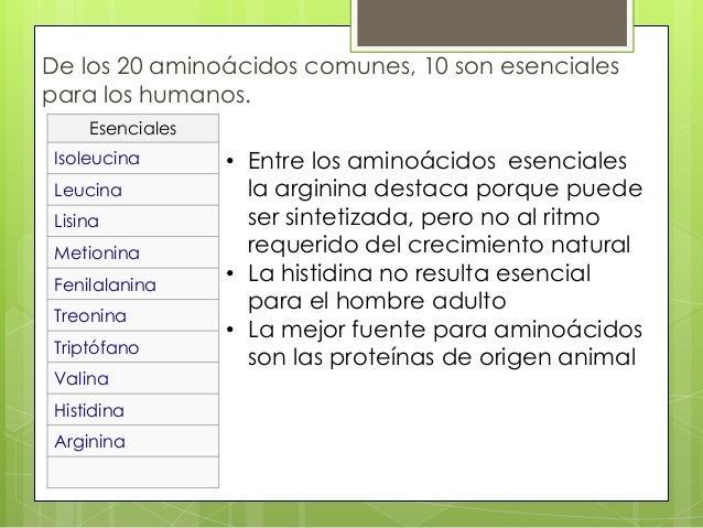 De los 20 aminoácidos comunes, 10 son esencialespara los humanos.     Esenciales Isoleucina       • Entre los aminoácidos ...