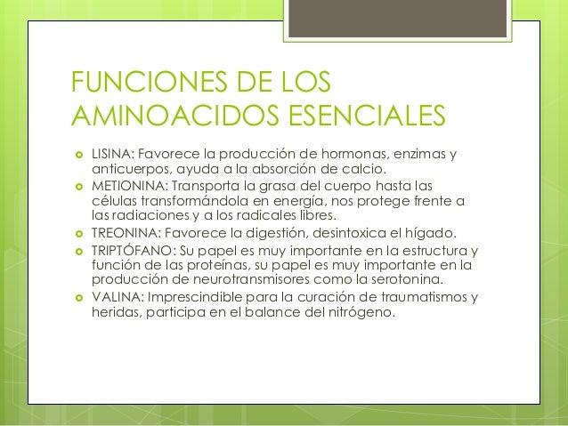 FUNCIONES DE LOSAMINOACIDOS ESENCIALES   LISINA: Favorece la producción de hormonas, enzimas y    anticuerpos, ayuda a la...