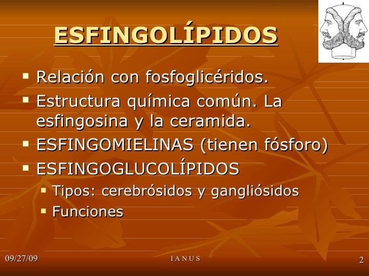 ESFINGOLIPIDOS Slide 2