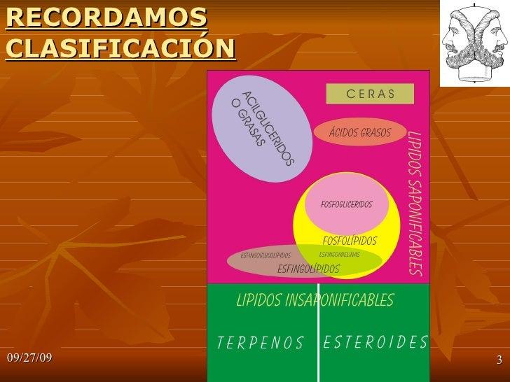 ESFINGOLIPIDOS Slide 3