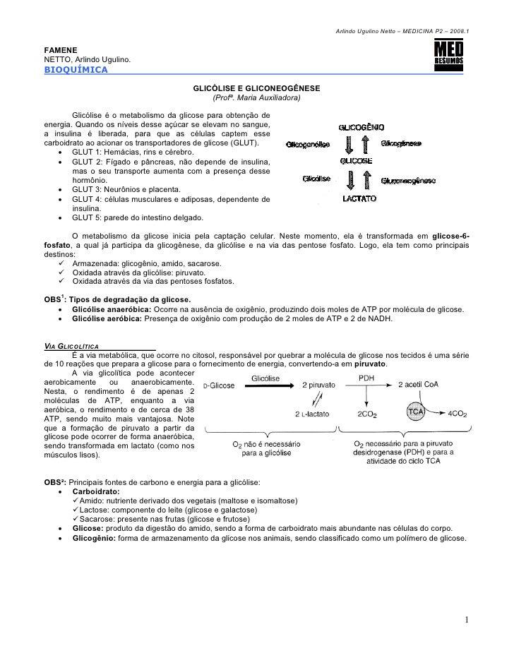 Arlindo Ugulino Netto – MEDICINA P2 – 2008.1FAMENENETTO, Arlindo Ugulino.BIOQUÍMICA                                       ...