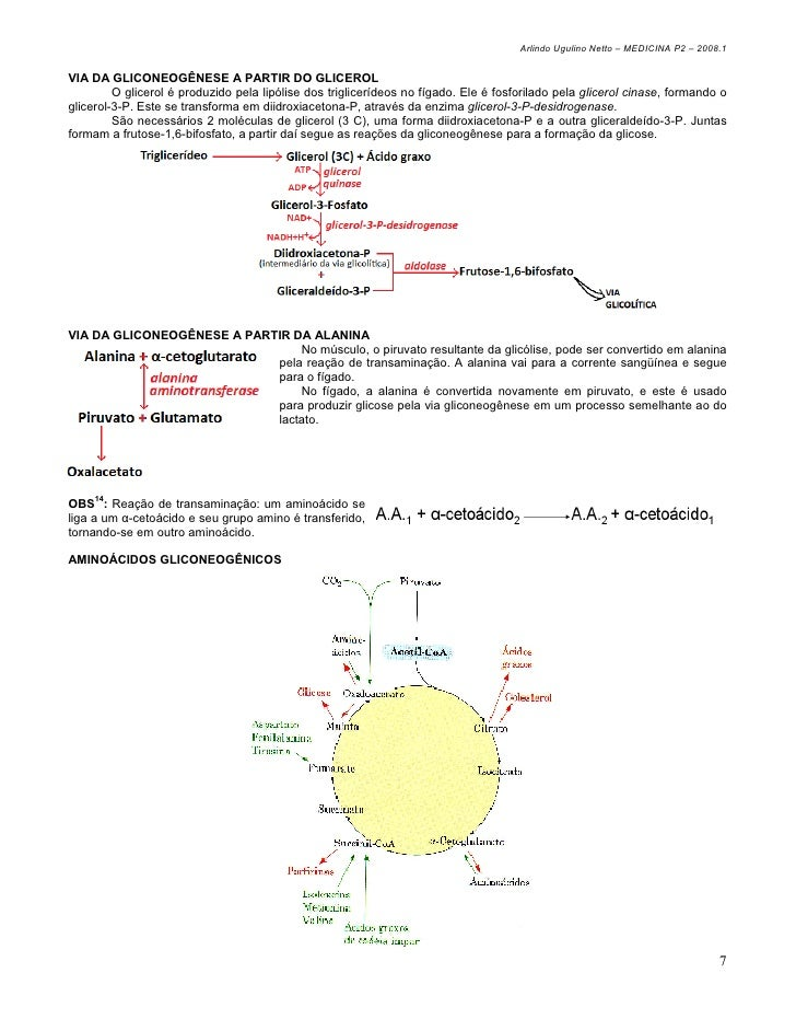 localização celular da via glicolítica