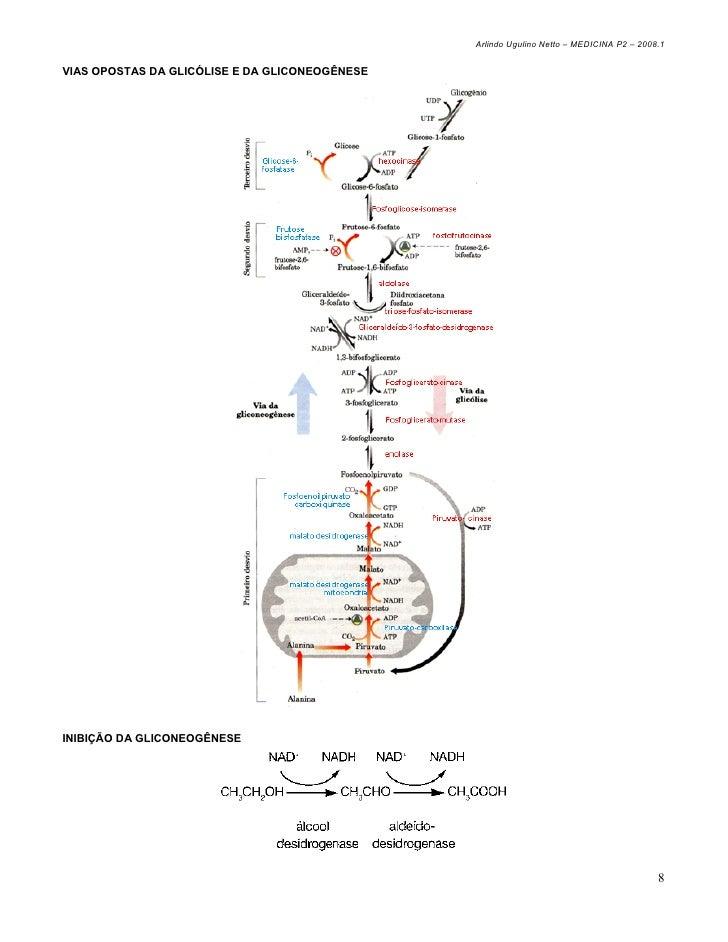 localização celular da via das pentoses