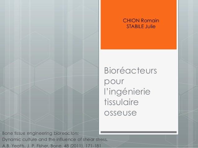 Bioréacteurs pour l'ingénierie tissulaire osseuse Bone tissue engineering bioreactors: Dynamic culture and the influence o...