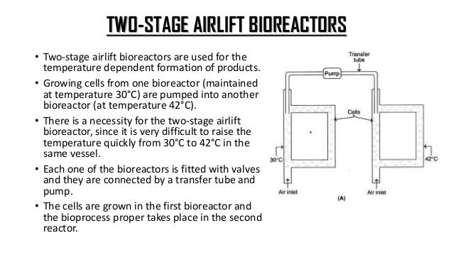 TOWER BIOREACTORS • A pressure-cycle fermenter with large dimensions constitutes a tower bioreactor. • A high hydrostatic ...