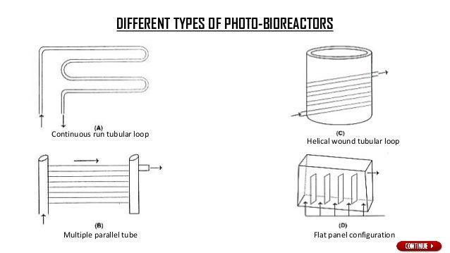 A tubular photobioreactors with parallel run horizontal tubes.
