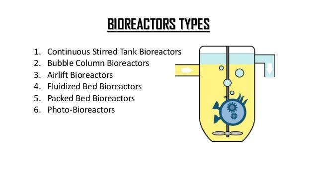 CONTINUOUS STIRRED TANK BIOREACTORS • A continuous stirred tank bioreactor consists of a cylindrical vessel with motor dri...