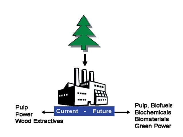 paper and pulp industry pdf