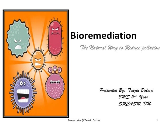 Bioremediation         The Natural Way to Reduce pollution                        Presented By: Tenzin Dolma              ...