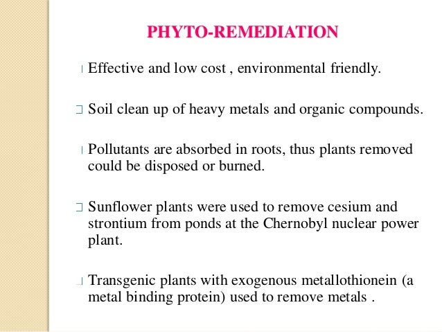 bioremediation manipulating nuclear and heavy metal Bioremediation is the use of micro-organisms to repair ecosystems and substances and nuclear leakage organisms that degrade heavy metals and crude oil have been discovered to naturally exist in the environment.