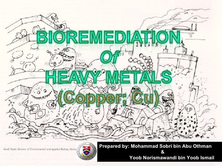bioremediation in quite heavy materials thesis