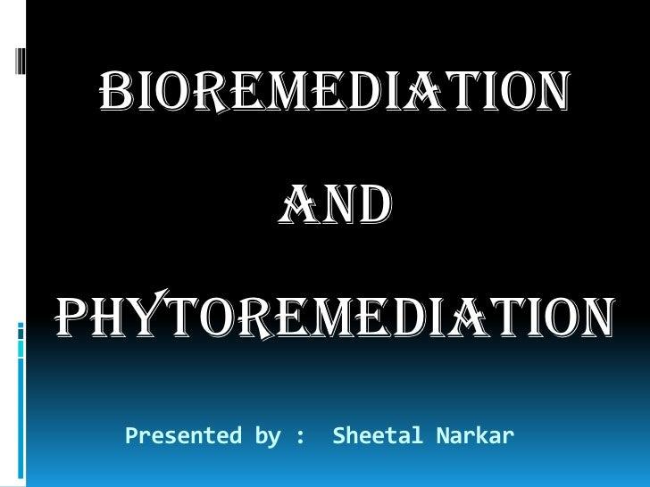 BIOREMEDIATION <br />AND<br />PHYTOREMEDIATION<br />Presented by :  SheetalNarkar<br />