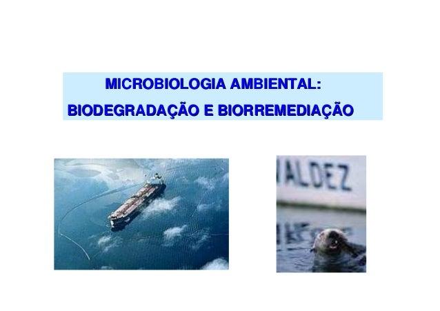 MICROBIOLOGIA AMBIENTAL: BIODEGRADAÇÃO E BIORREMEDIAÇÃO