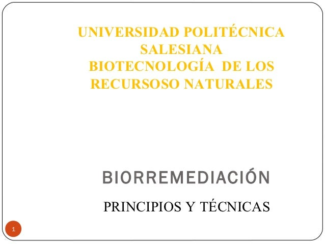 UNIVERSIDAD POLITÉCNICA           SALESIANA     BIOTECNOLOGÍA DE LOS     RECURSOSO NATURALES      BIORREMEDIACIÓN      PRI...