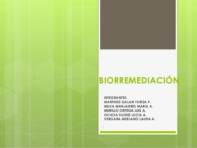 BIORREMEDIACIÓN INTEGRANTES: MARTINEZ GALAN YURIZA P. MEJIA MANJARRES MARIA A. MURILLO ORTEGA LUIS A. OCHOA FLOREZ LUCIA A...