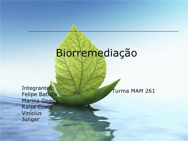 Biorremediação Integrantes: Felipe Batista Marina Gogoy Raísa Costa Vinícius Junger Turma MAM 261