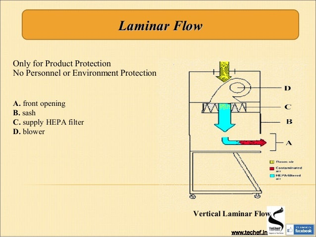Elegant Laminar Flow Hood Vs Biosafety Cabinet