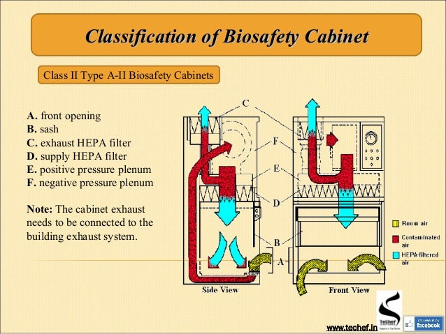 Luxury Biosafety Cabinet Level 2