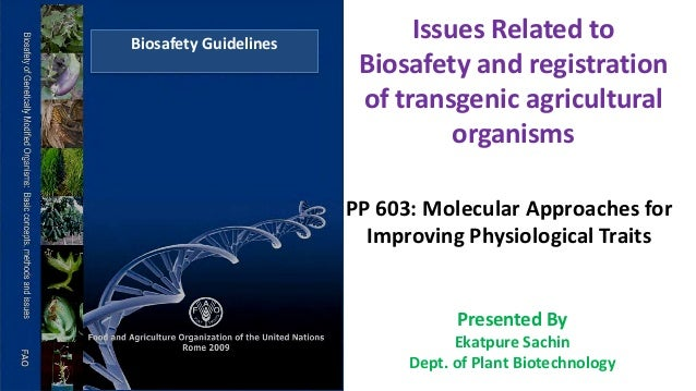 applications of transgenic plants ppt