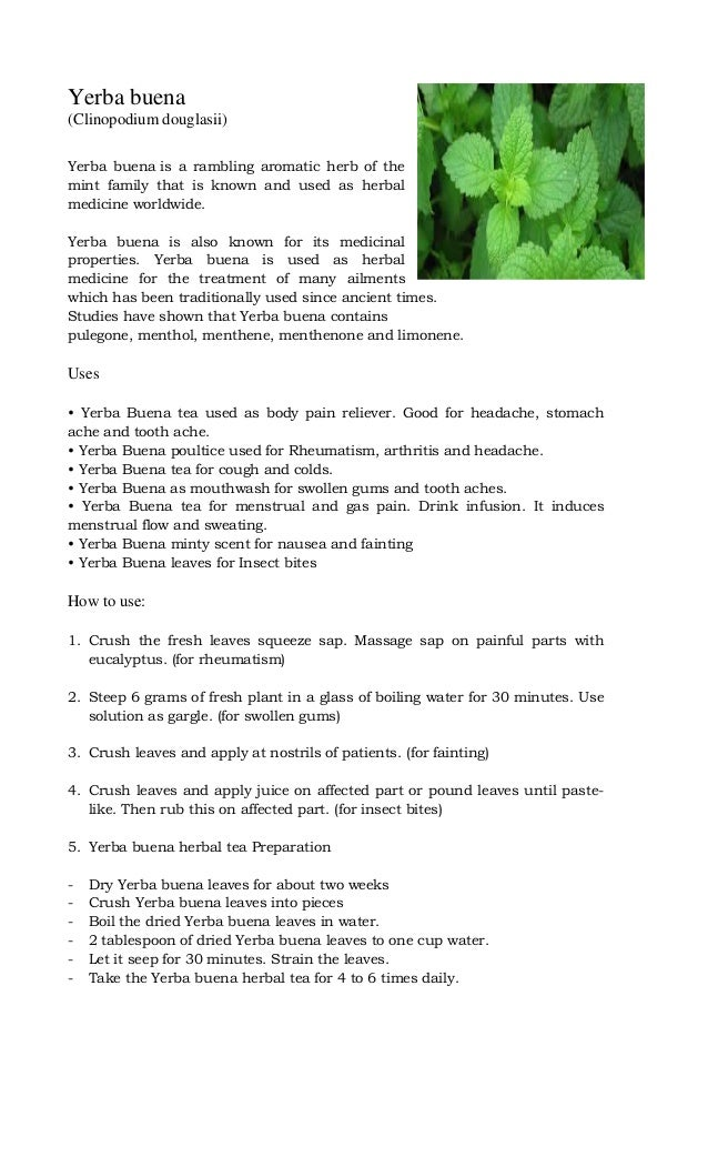 Yerba buena (Clinopodium douglasii) Yerba buena is a rambling aromatic herb of the mint family that is known and used as h...