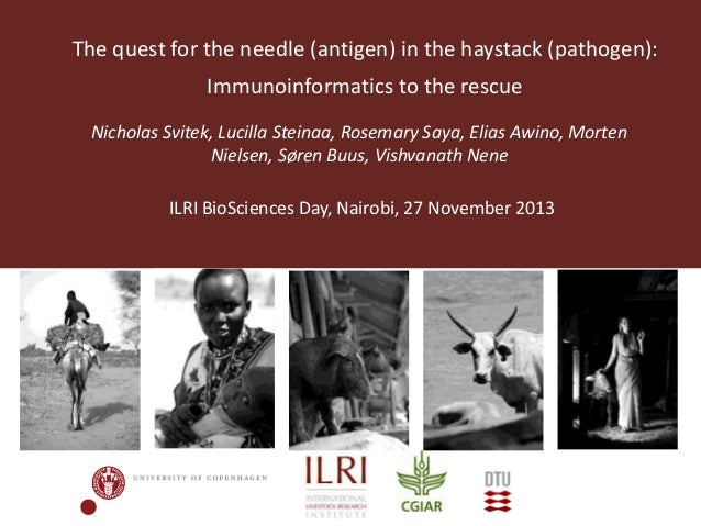 The quest for the needle (antigen) in the haystack (pathogen): Immunoinformatics to the rescue Nicholas Svitek, Lucilla St...