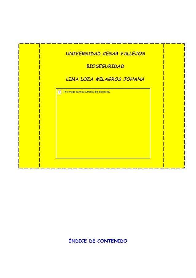 UNIVERSIDAD CESAR VALLEJOS BIOSEGURIDAD LIMA LOZA MILAGROS JOHANA ÍNDICE DE CONTENIDO