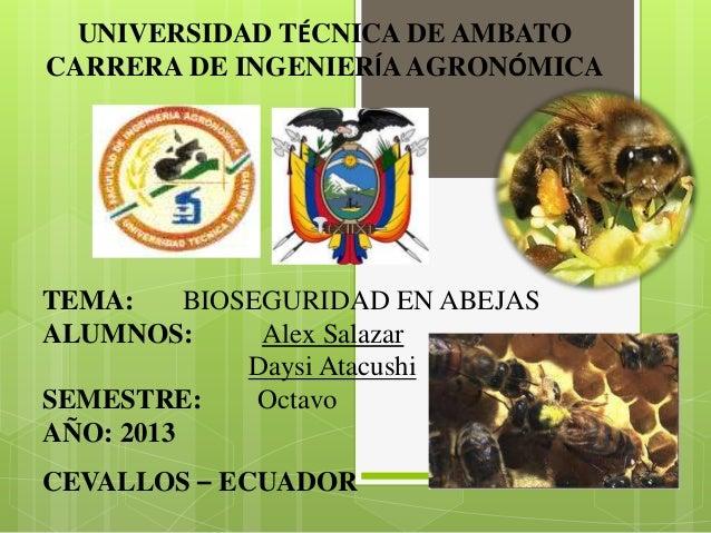 UNIVERSIDAD TÉCNICA DE AMBATO CARRERA DE INGENIERÍA AGRONÓMICA  TEMA: BIOSEGURIDAD EN ABEJAS ALUMNOS: Alex Salazar Daysi A...