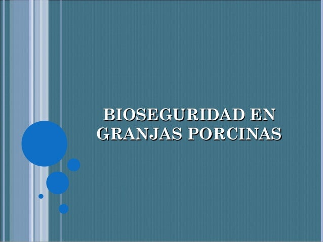 BIOSEGURIDAD ENGRANJAS PORCINAS