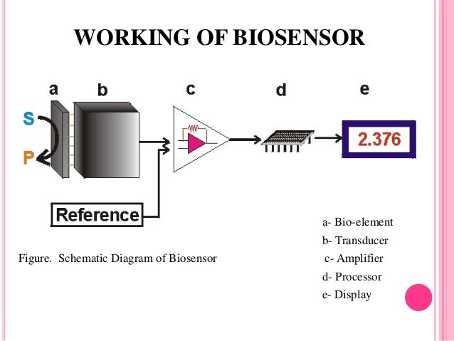 Schemview further Biosensors 33317356 furthermore  moreover 20082229582226783 likewise TDA7294. on amplifier schematic diagram