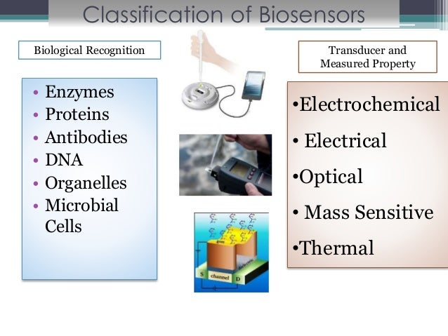 Biosensors for Food Analysis